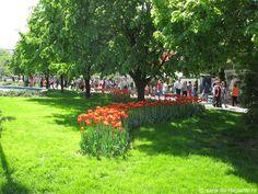 Romania, Dolores Park, Travel, Viajes, Destinations, Traveling, Trips