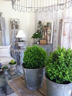 Love this look! Grey distressed furniture, green topiaries & is that garden bed edging as a light fixture?