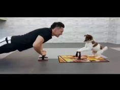 VIDEO: Teeny, el perro que realiza ejercicios junto a su dueño