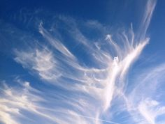 The Cloud Appreciation Society: Fighting the banality of 'blue-sky' thinking, an organization for cloud lovers of the world!  (Pictured is a cirrus Angel over Wales by Anthony Fairhall)