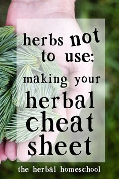 Create a personalized list of your individual contraindications and the herbs you should avoid