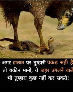 Marathi Quotes, Gujarati Quotes, Punjabi Quotes, Motivational Picture Quotes, Inspirational Quotes Pictures, Chanakya Quotes, Kalam Quotes, Gita Quotes, Funny Jokes In Hindi