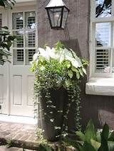 Awesome Front Door Planter Ideas with tall, cone shaped flower pots Planters For Shade, Tall Planters, Outdoor Planters, Shade Plants, Porch Planter, Front Door Entrance, Glass Front Door, Front Entrances, Glass Doors