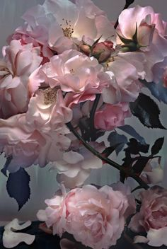 "Nick Knight's photograph of roses from ""Florist"", the SHOWstudio Shop exhibition in London."