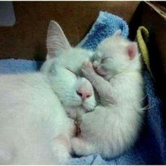 Mother ans Baby.......