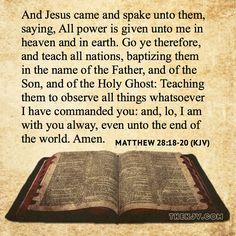 Image result for matthew 28 18-20 kjv