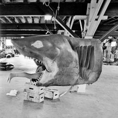 gameraboy:  Building Bruce, the shark from Jaws (1975)
