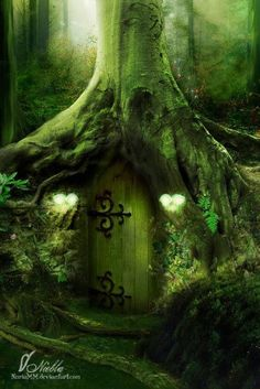 Enchanted forest shhh on pinterest fairies fairy tales for The magic elf door