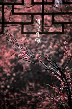 Blur Image Background, Blur Background In Photoshop, Desktop Background Pictures, Blur Background Photography, Photo Background Editor, Studio Background Images, Light Background Images, Picsart Background, Vietnam Voyage