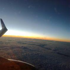 In plane. #plane #madeira