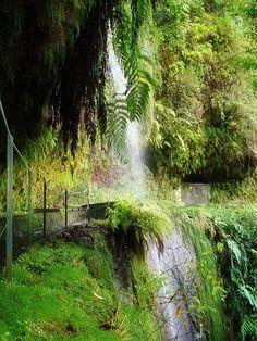 """Ribeiro Bonito Waterfall at """"Levada do Rei"""" Arco de  S. Jorge.Madeira Portugese archipelago."""