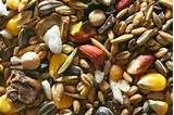 Experienced seed saving - Corn to Cukes to Squash/Pumpkin - http://www.seedsave.org/issi/904/experienced.html