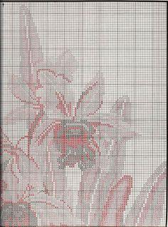 Gallery.ru / Фото #12 - Орхидеи - mornela
