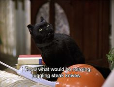 31 Things That Happen When You Look For A Job- As told by Salem from Sabrina the TV show