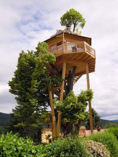Daddy would like this house--especially if it was near a river. House In The Woods, Cozy Backyard, Treehouse Ideas, Building A Treehouse, Green Life, Home Decor, Project Projects, Wood Projects, Woodworking Wood