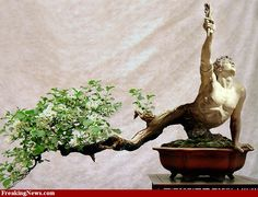 Photoshop bonsai/sculpture. Looks like something out of a Greek myth.