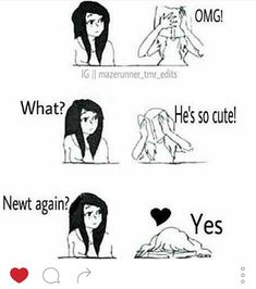 This is how me and my best friend reacted to me liking my boyfriend.