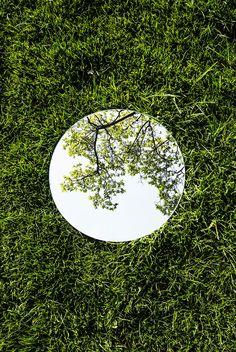 Com um espelho, uma câmera e muita criatividade o fotógrafo Sebastian Magnani explora a beleza da natureza através dos reflexos. Confira!