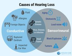 Conductive vs Sensorineural Hearing Loss - differences between causes Love Speech, Speech And Hearing, Hearing Aids, Ocupational Therapy, Speech Therapy, Speech Language Pathology, Speech And Language, Sign Language, Ear Anatomy