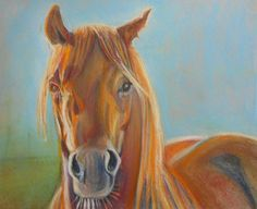 more horse art