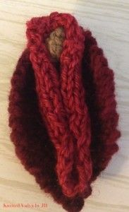 did a nipple that traveled the country to art showings for breast cancer, I did a thong for AIDS awareness, so why not a vagina for the GOP and possible loss of womens rights in our country? Aids Awareness, Reproductive Rights, Before Us, Knit Or Crochet, Chain Stitch, Powerful Women, Breast Cancer, Knitting, Sewing