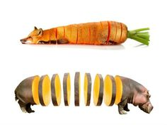This is what animals would look like if they were fruits and vegetables » Lost At E Minor: For creative people