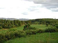Stange - Wikipedia