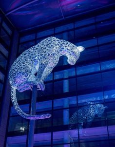 Marischal Square at Night- 'Poised' by Andy Scott- creator of The Kelpies sculpture in Falkirk. Poised is the first sculpture by Andy Scott in the North East.