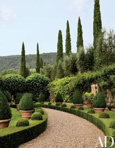 Clipped boxwood hedges flank a gravel path.
