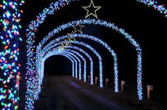 Side entry Decorating With Christmas Lights, Christmas Decorations, Christmas Train, Diy Wedding, Wedding Decorations, Around The Worlds, Exterior, House Design, Hamilton
