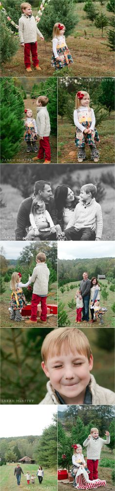 Styled Christmas Photo Sessions at Tree Farm | Sarah McAffry | Voted Knoxville's Best Photographer | Knoxville Family Photographer
