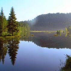 Lac de Lispach - Vosges - France