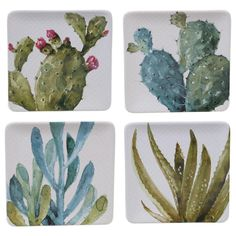 For chic Southwest style, set the table with these Certified International Mixed Greens Cactus Verde salad plates. Green Cactus, Cactus Flower, Watercolor Cactus, Watercolor Art, Green Watercolor, Cactus Terrarium, Type Setting, Cacti And Succulents, Plate Sets
