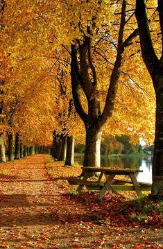 Прекрасная осень... » RadioNetPlus.ru развлекательный портал