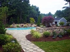 Design for backyard with stone wall and walkway, in gound pool, and shed.