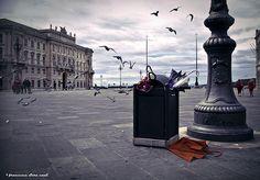 ulisszesz:  Quando a Trieste soffia la Bora by Francesca Sara Cauli on Flickr.