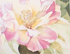 Step by step for painting this flower with watercolors.