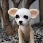 """I named this little pup Casey. She (or he if you prefer) is a one of a kind needle felted puppy designed and created by me. Casey is 5"""" tall x 3"""" wide, was created with Merino and Corriedale wool and can hold either her needle felted doll or hand sewn blanket, both of which come with the sculpture."""