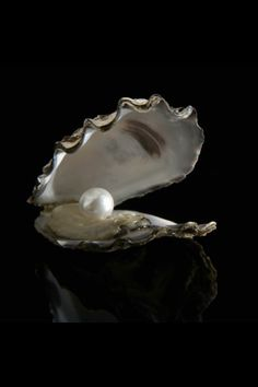 The pearl - one of nature's wonders