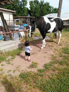He loves both my daughters, like they were his. When we walk out to the pasture to say hi or bring him up, he is very picky about which horses can come up to my girls. More than once has he put himself between my girls and I and prevented a major accident. He is my world, my everything. Love my big boy