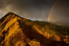Tropical biking - Callum Jelley. Oahu, Hawaii