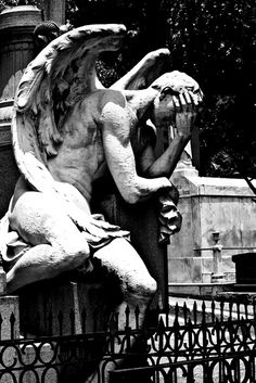 Cemetery Angel - I'm sure my guardian angel has felt this way about me from time to time....
