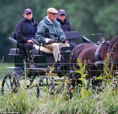 Philip is known for his love of carriage-driving, taking up the hobby again after having a hip operation in April Hm The Queen, Royal Queen, Royal Prince, Prins Philip, Elisabeth Ii, Horse Carriage, Royal Engagement, Windsor Castle, England