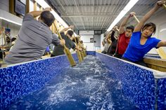 Toronto gym has a Dragon Boat indoor paddling pool Museum Architecture, Dragon Boat, Canoeing, Rowing, Paddle, Toronto, Indoor, Training, Gym