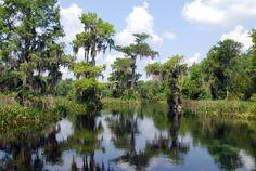 Everglades Natinal Park Quick Facts | Everglades Tours February 05, 2015