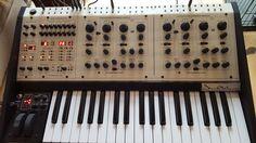Tom Oberheim Two Voice Pro