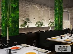 jungle-moss-ristorante