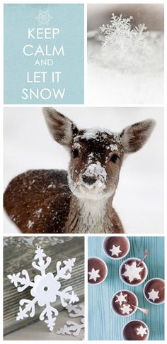 Tiny adorable deer in winter. Beautiful Creatures, Animals Beautiful, Cute Animals, Animals In Snow, Baby Animals, Noel Christmas, Winter Christmas, Scandinavian Christmas, Christmas Morning