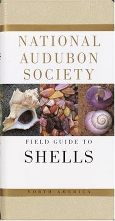 National Audubon Society Field Guide to North American Seashells (National Audubon Society Field Guides)