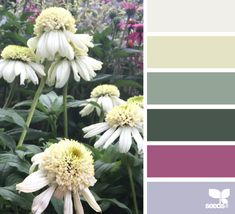 Market Flora - http://design-seeds.com/index.php/home/entry/market-flora8